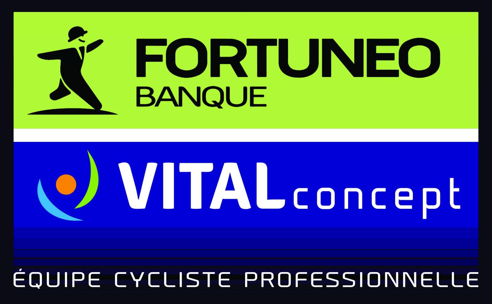 Logo Fortuneo Vital Concept
